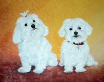 Hondjes, in opdracht.  50 x 40